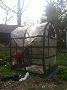 greenhouse finished